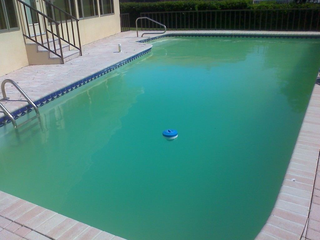 Why You Might Have A Cloudy Pool South Austin Pool Cleaning